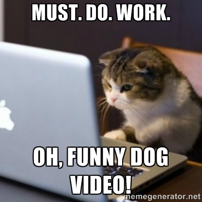 Computer Memes must do work oh funny dog video