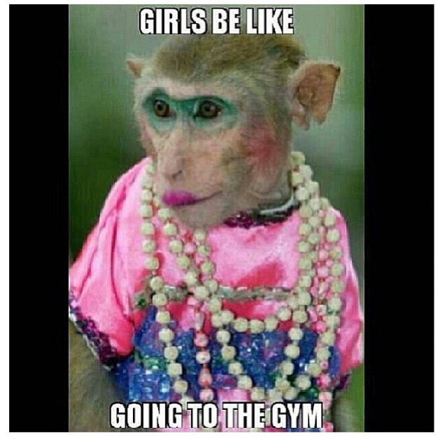 Cool Memes girls be like going to the gym