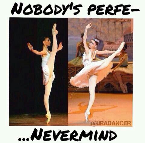 Dance Meme Nobody perfe never mind