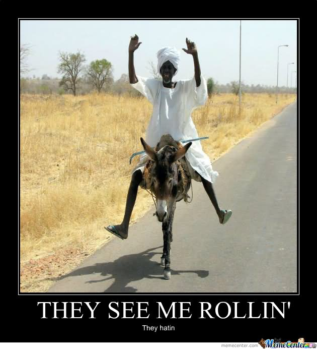 Donkey Meme they see me rollin they hatin
