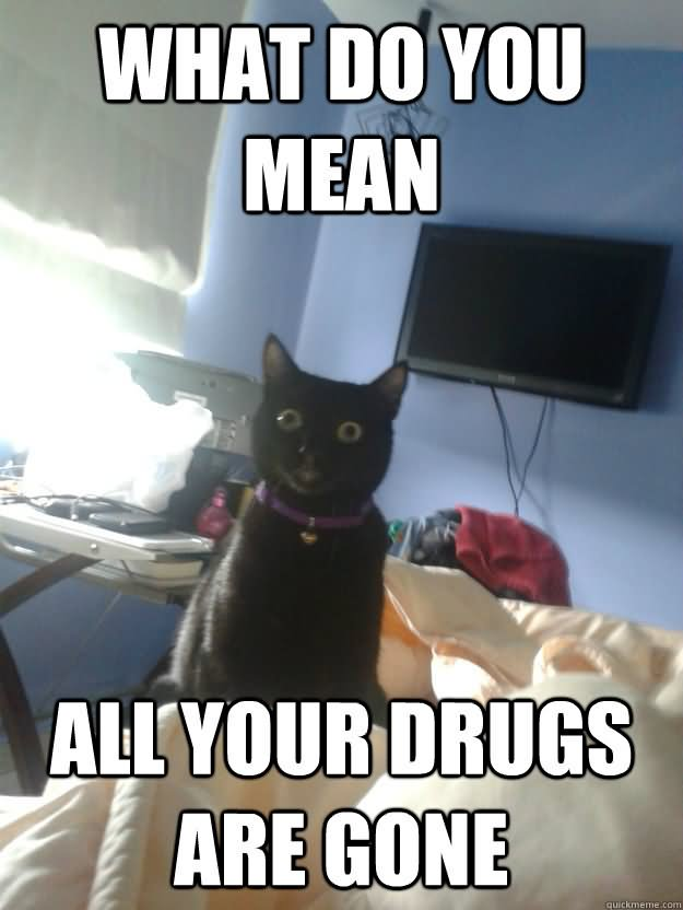 Drugs Meme What do you mean all Your drugs are gone