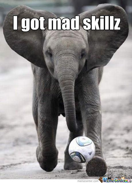 Elephant Meme I got mad skillz