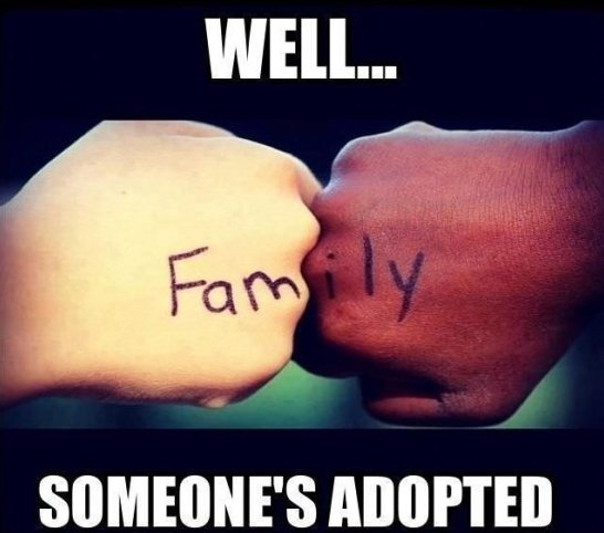 Family Meme Well family someone's adopted