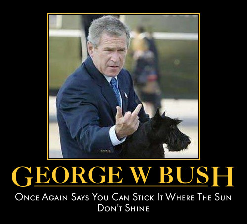 George w bush once again says you can stick it George Bush Meme