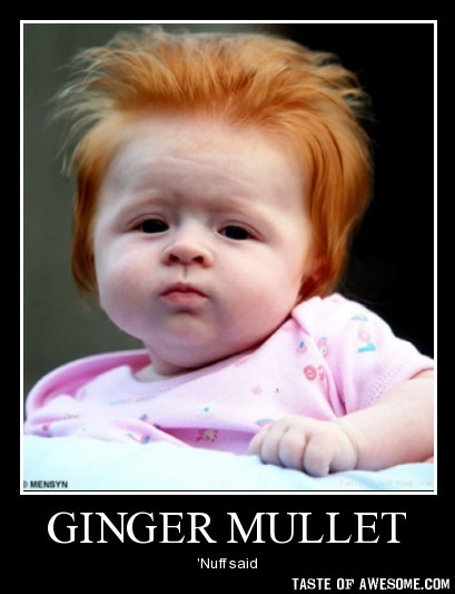 Ginger mullet nuff said Mullet Memes