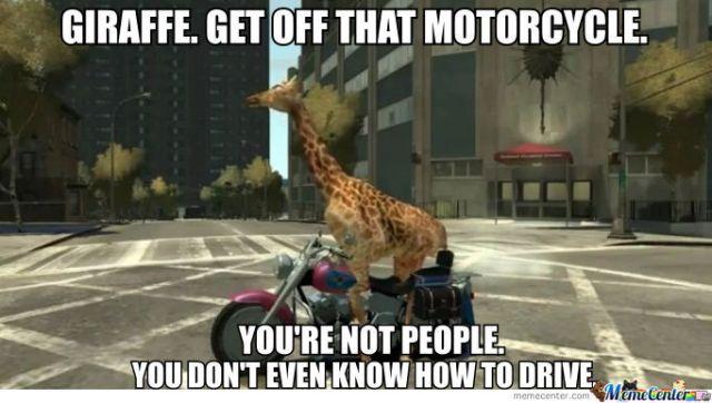 Giraffe get off that motorcycle you're not people you don't Giraffe Meme