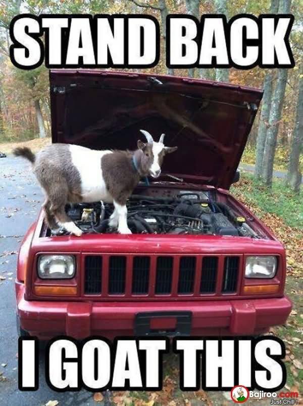 Goat Meme Stand back i goat this