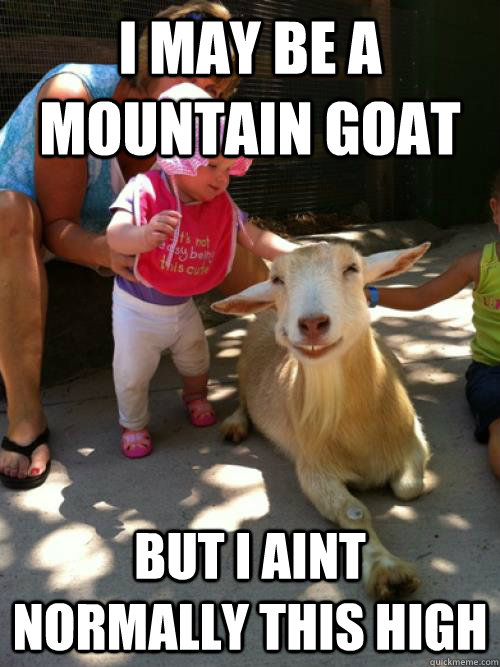 Goat Memes I may be a mountain goat but i aint