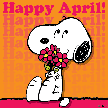Happy April Fools Wishes Image56