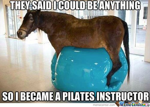 Horse Memes That said i could be anything so i became a pilates