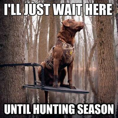 Hunting Meme ill just wait here until hunting season