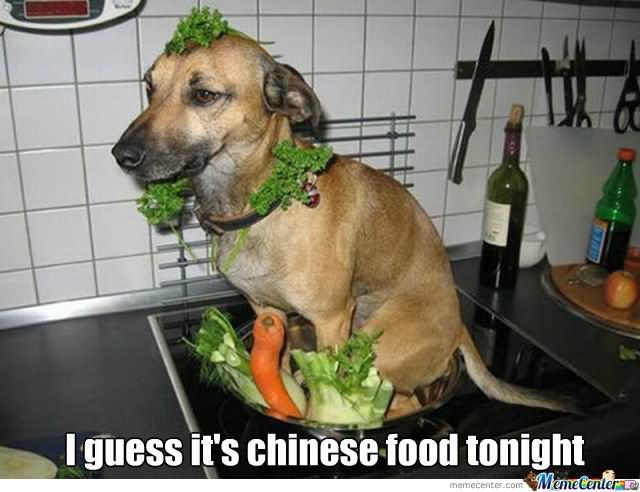 I guess its chiness food tonight Food Meme