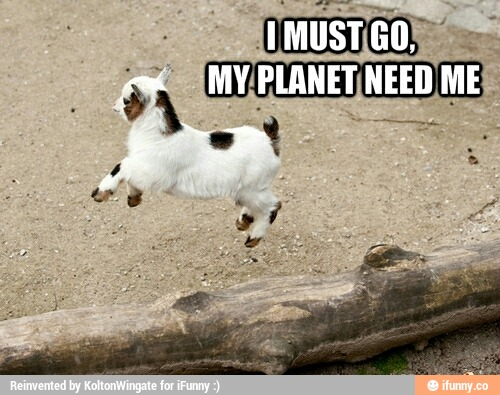 I must go my planet need me Goat Meme