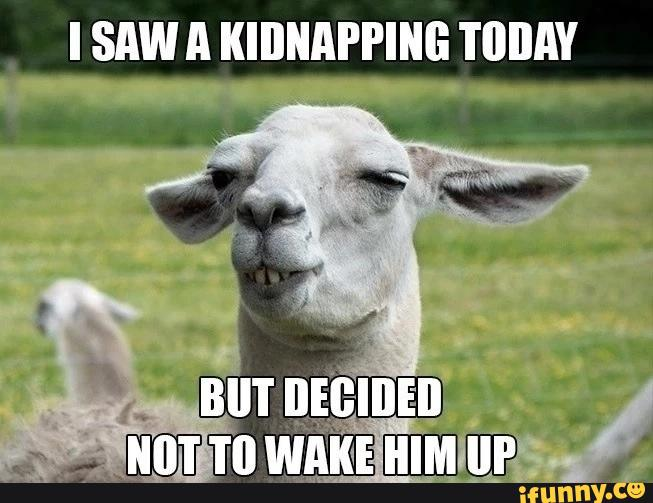 I saw a kidnapping today but decided Goat Meme
