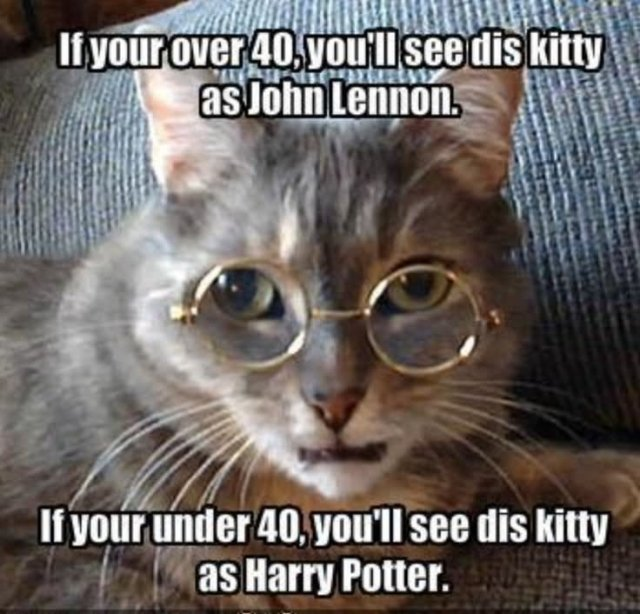 If your over 40 you'll see dis kitty as john lennon if your Cow Meme