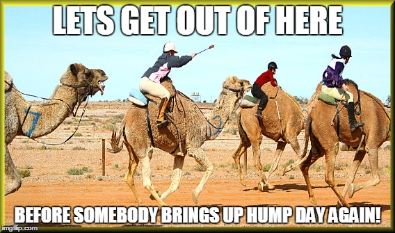 Lets get out of here before somebody Camel Meme