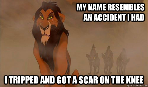 Lion Meme My name resembles an accident i had