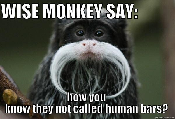 Monkey Meme Wise monkey say how you know