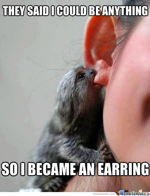 Monkey Memes They Said i could be anything so i became an earring