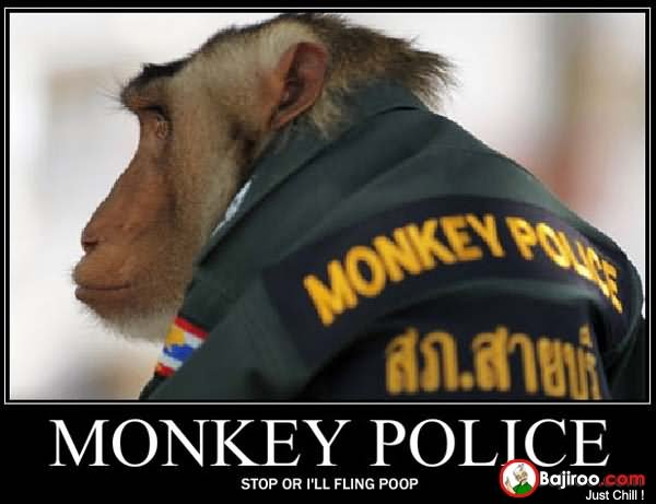 Monkey police stop or i'll flying poop Monkey Memes