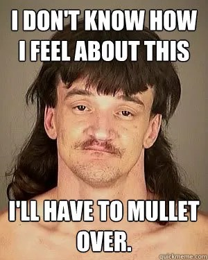 Mullet Memes I don't know how i feel about this