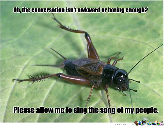 Oh the conversation isn't Awkward or boring enough please allow me to sing Cricket Meme