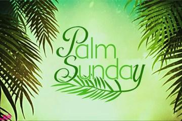 Palm Sunday Images 0133