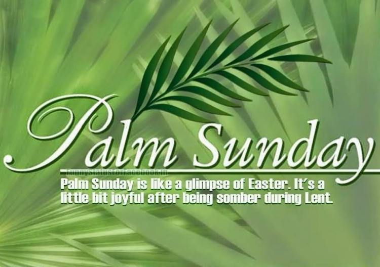 Palm Sunday Wishes Quotes 22