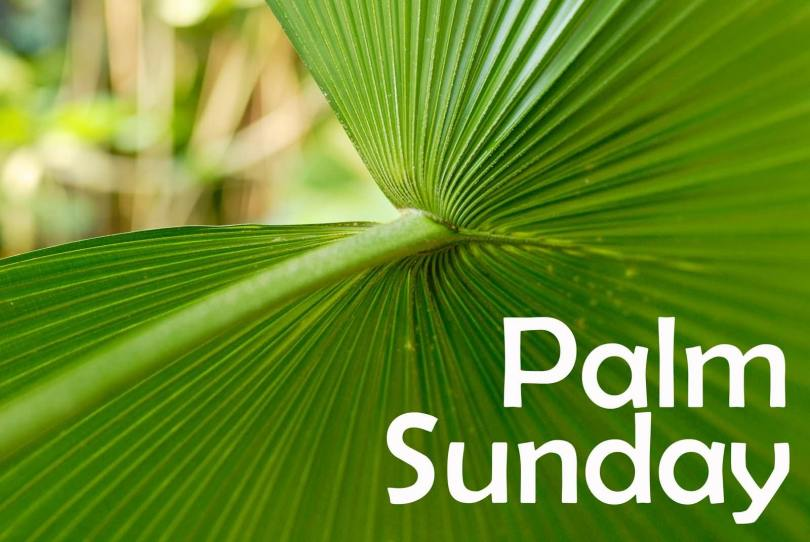 Palm Sunday Wishes Wallpaper 0124