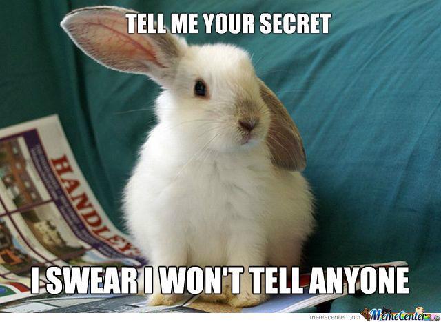 Tell me your secret i swear i won't tell anyone Bunnies Memes