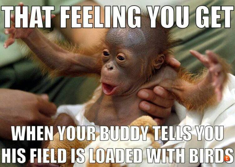 That feeling you get when your buddy tells Hunting Meme