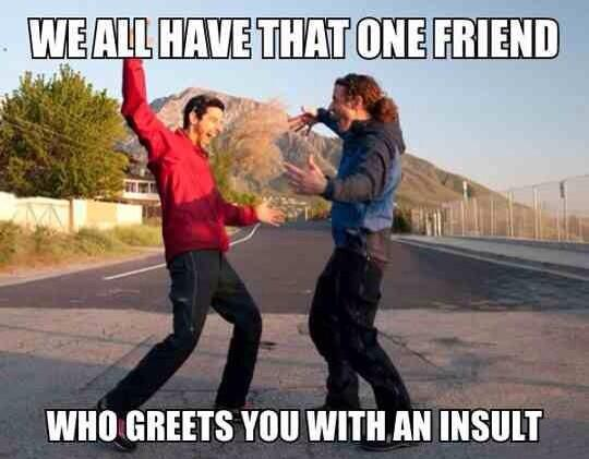 We all have that one friend Insult Meme