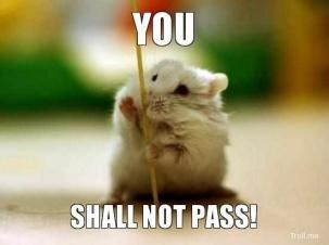 You shall not pass Hamster Meme