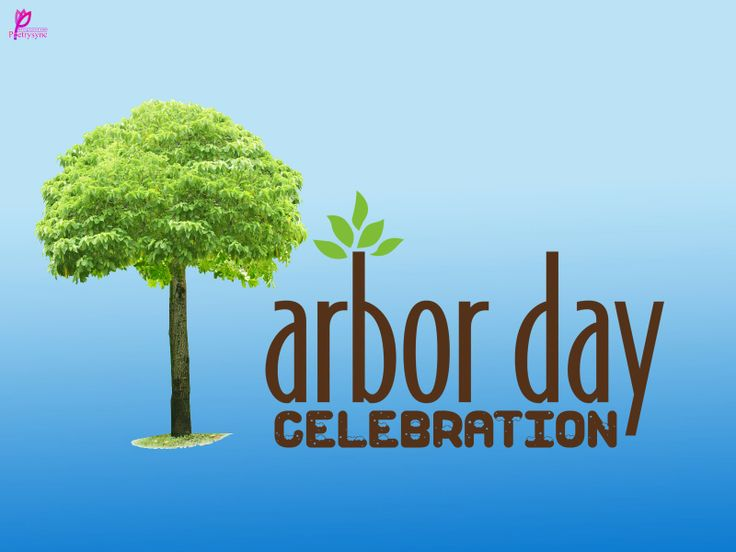 Arbor Day Celebrations Plant A Tree