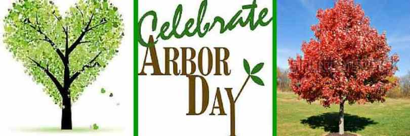 Best Day Save Tree Happy Arbor Day Images