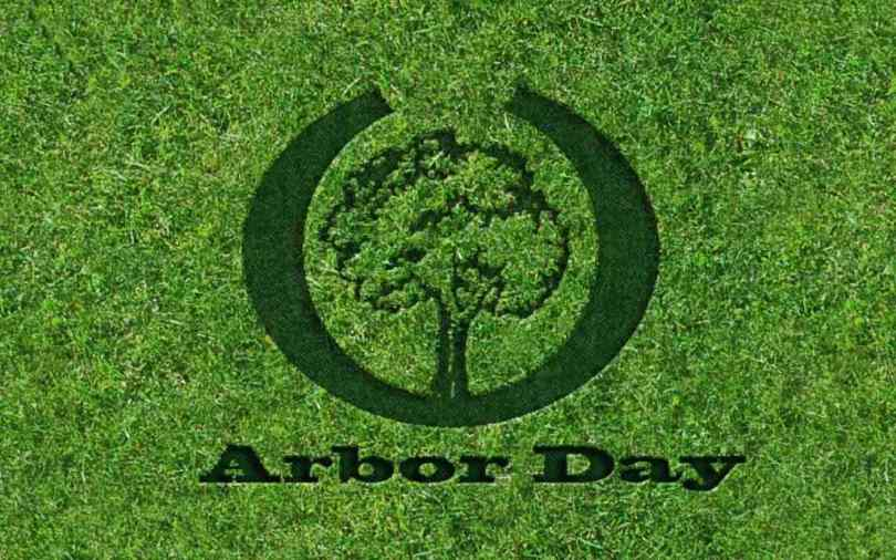 Celebrate Arbor Day Go Green