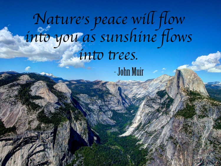 Earth Day Quotes nature's peace will flow into you as sunshine flows into trees