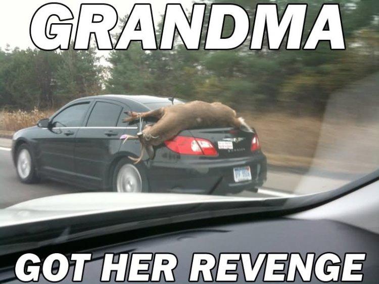 Grandma got her revenge Redneck Memes