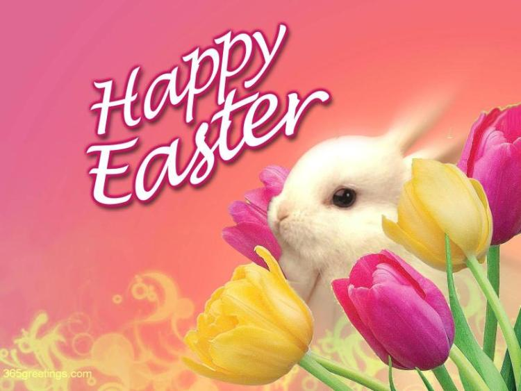 Happy Easter Greetings Images 44208