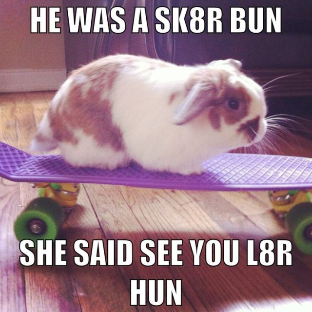He was a sk8r bun she said see you Rabbit Memes