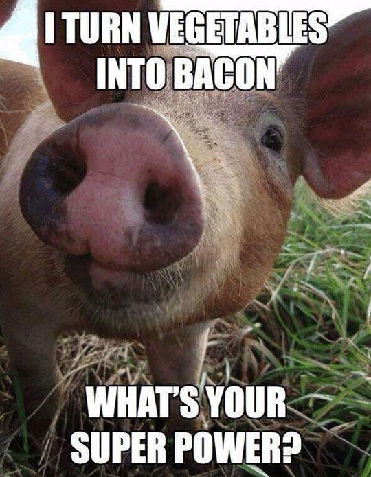 I turn vegetables into bacon Pigs Meme