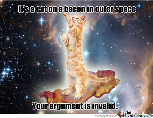 Its a cat on a bacon in outer space your argument in invalid Space Meme
