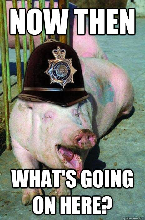 Now then what's going on here Pigs Meme