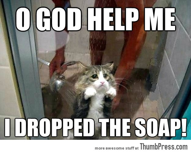 O god help me i dropped the soap Pet Meme