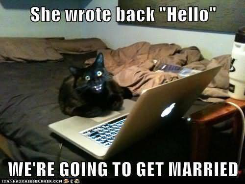 Pet Meme She wrote back hello we're going to get