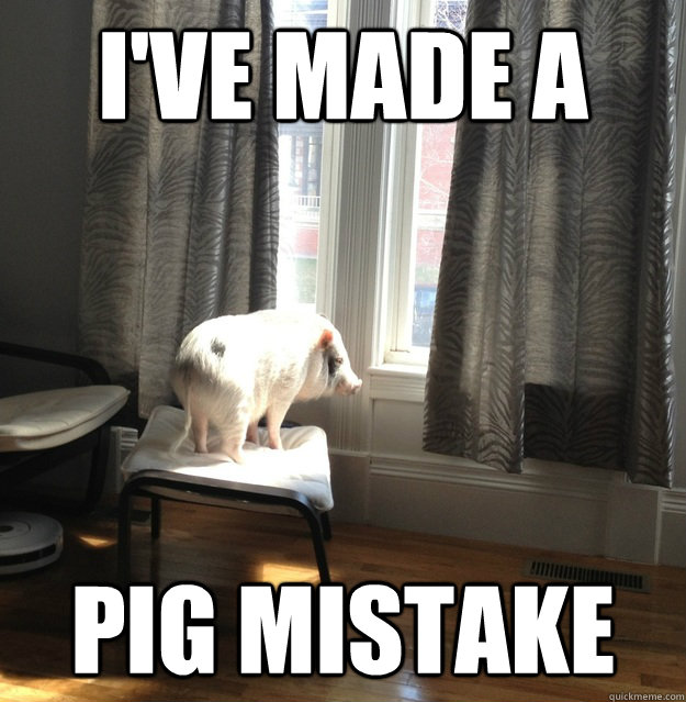 Pigs Meme I've made a pig mistake