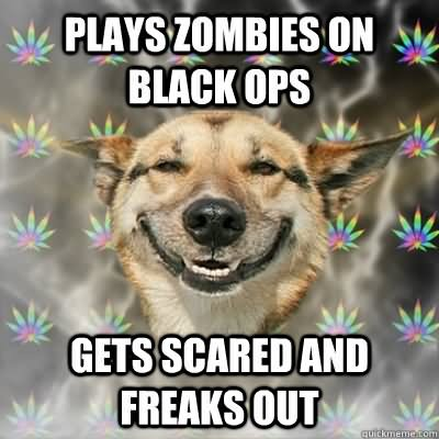 Plays zombie on black ops gets Zombie Meme