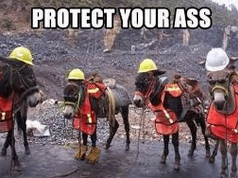 Protect your ass Safety Meme