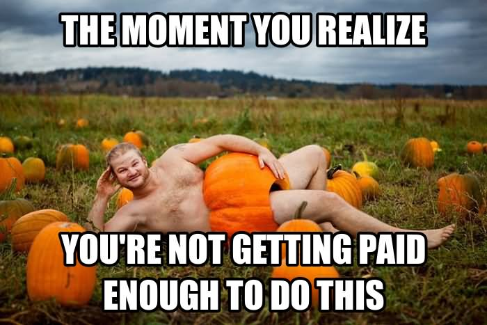 Pumpkin Meme The moment you realize you're not getting
