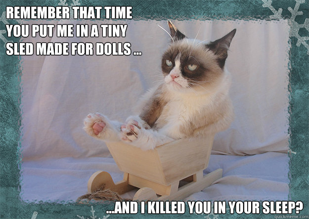 Sled Meme Remember that time you put me in a tiny sled made for dolls